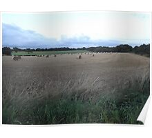 Countryside: Kingswood, Surrey -(260811j)- digital photo Poster