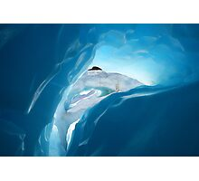 ice cave II  fox glacier  south westland  nz Photographic Print