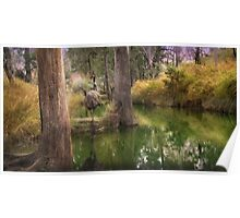 Campbell Creek,Dysart Queensland, Australia Poster