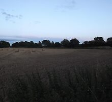 Countryside: Kingswood, Surrey -(260811kk)- digital photo by paulramnora