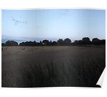 Countryside: Kingswood, Surrey -(260811kk)- digital photo Poster
