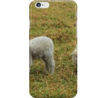 Lamb and Ewe iPhone Case/Skin