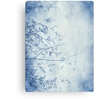 nature in blue Canvas Print