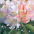 FLOWERS WITH FINESSE        Paintings by Jan Lawnikanis by Jan Lawnikanis
