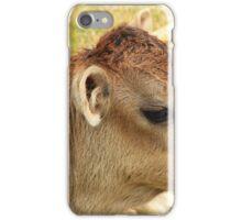 Face of a Calf iPhone Case/Skin