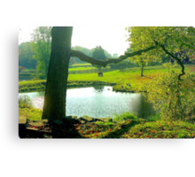 Indian Summer in Connecticut Canvas Print
