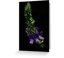 Fractal Lilac Shining Greeting Card