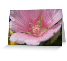 Flower 34 Greeting Card