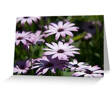 Flower 40 Greeting Card