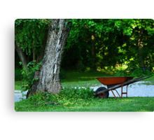 Summer in my yard Canvas Print
