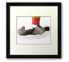 Ticklish Frodo Framed Print