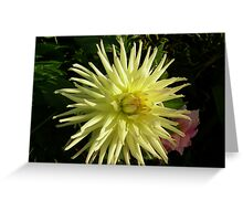 Flower 60 Greeting Card