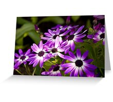 Flower 70 Greeting Card