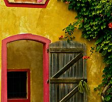 16th Century Doorway by Stephen  Saysell