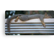 Morning Chillout Metal Print