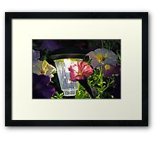 Night Flowers Framed Print