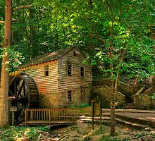 Rice Grist Mill by Jerry E Shelton