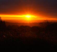 Quantock Sunrise by VisivoMedia