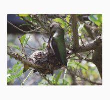 Hummingbird Momma Feeding Her Baby Baby Tee