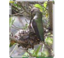 Hummingbird Momma Feeding Her Baby iPad Case/Skin