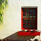 come to my window by Lynne Prestebak