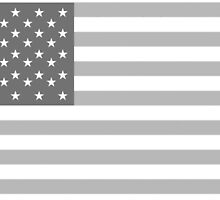 American Flag, STARS & STRIPES, USA, America, Grey on white by TOM HILL - Designer