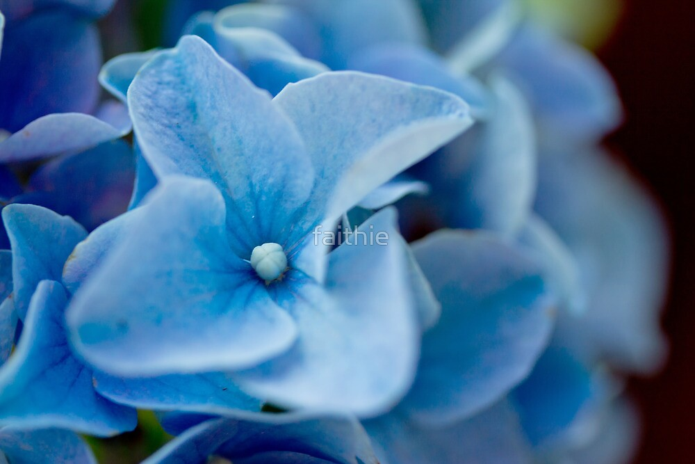 ode to blue by faithie