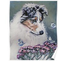 Collie Fine Art Painting Poster
