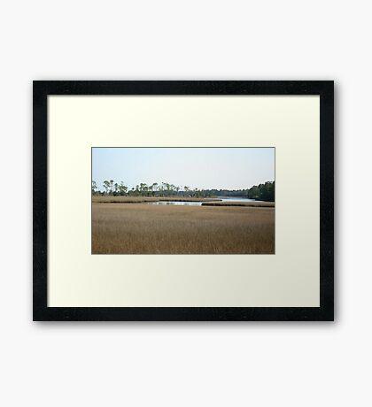 THE MARSH ON BURNT MILL CREEK Framed Print