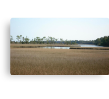THE MARSH ON BURNT MILL CREEK Canvas Print