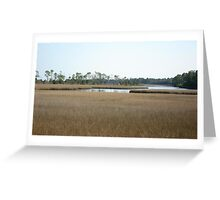 THE MARSH ON BURNT MILL CREEK Greeting Card