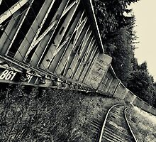 The Railroad That Was Forgotten  by Josephine Beedle