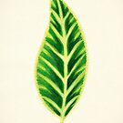 Tropical Leaf I by James McKenzie