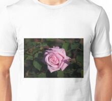 Longwood Gardens - Spring Series 83 Unisex T-Shirt