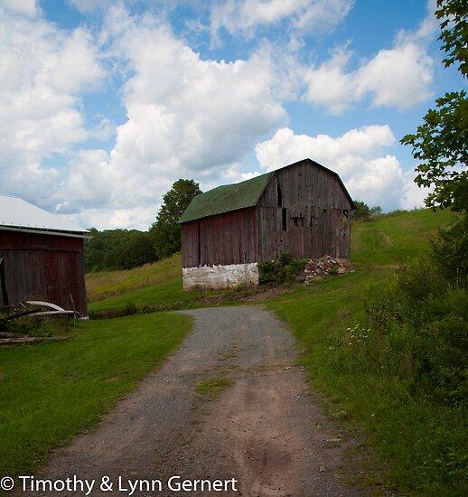 The Farm by Timothy L. Gernert