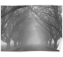 Misty Sentinels of The Avenue Poster
