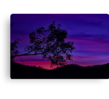 """Paluma Twilight"" Canvas Print"