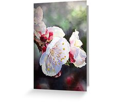 Apricot Flowers Greeting Card