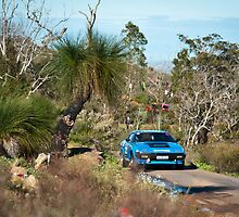 Targa West 2011 - Car 49c - Photo 1 by Psycoticduck