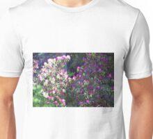 Longwood Gardens - Spring Series 87 Unisex T-Shirt