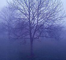 In the bleak Mid-Winter. by sweeny