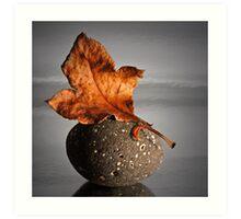 Autumn Tranquillity Art Print