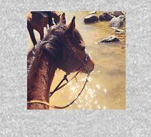Horse Walking Through Water Unisex T-Shirt