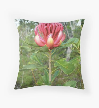 Red Torch Throw Pillow