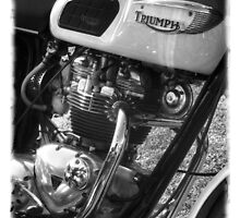 Triumph Motorcycle by JohnT100