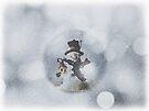 Frosty in a Bubble by Denise Abé