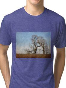 Winter Trees Tri-blend T-Shirt