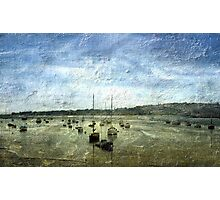 Boat moorings on the River Exe (Devon) Photographic Print