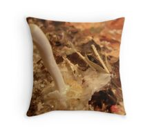 LOVE NATURE COLLECTION - HEART OF NATURE 14 MATCH ME Throw Pillow