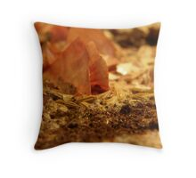 LOVE NATURE COLLECTION - HEART OF NATURE 15 SEE ME EMERGE Throw Pillow